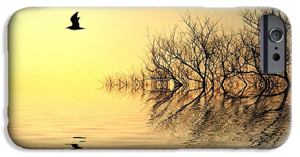 Reflecting Trees iPhone Cases - Dusk Flight iPhone Case by Sharon Lisa Clarke