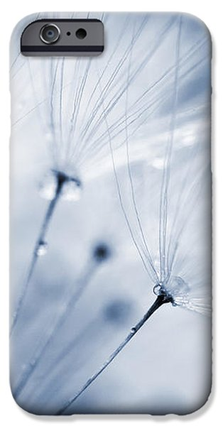 Dusty Blue Dandelion Clock and Water Droplets iPhone Case by Natalie Kinnear