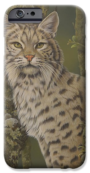Bobcats Paintings iPhone Cases - Dusty iPhone Case by Laura Regan