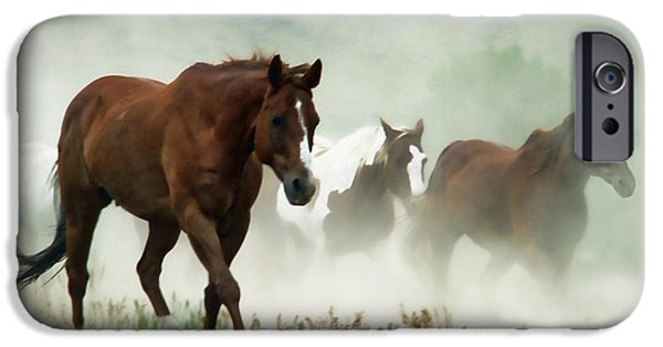 Horse iPhone Cases - Dusty iPhone Case by Sylvia Thornton