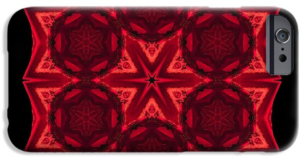 David J Bookbinder iPhone Cases - Dying Amaryllis III Flower Mandala iPhone Case by David J Bookbinder