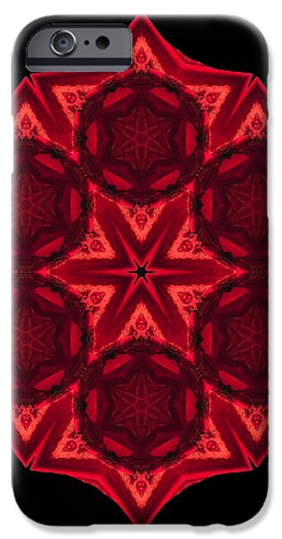 Dying Amaryllis III Flower Mandala iPhone Case by David J Bookbinder