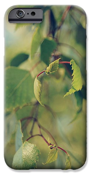 Nature Abstract iPhone Cases - Each Sight iPhone Case by Laurie Search