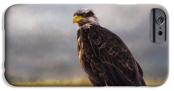 Blackstone River iPhone Cases - Eagle Art - Be Who You Are iPhone Case by Jordan Blackstone