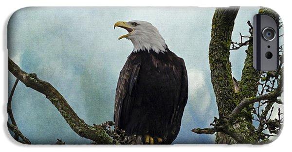 Blackstone River iPhone Cases - Eagle Art - Character iPhone Case by Jordan Blackstone