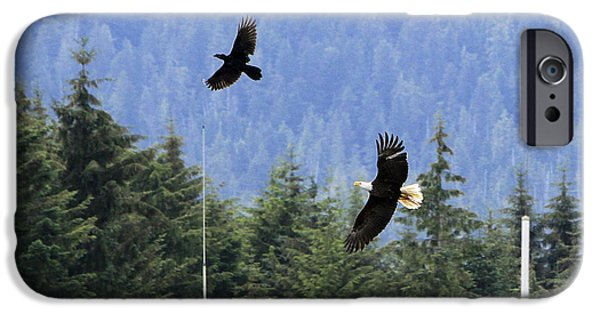 Crows Pyrography iPhone Cases - Eagle Chasing Raven iPhone Case by Shoal Hollingsworth