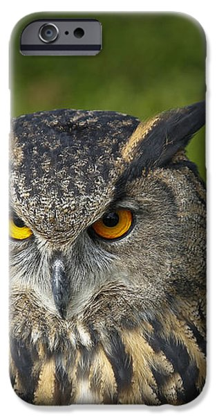 Eagle Owl iPhone Case by Clare Bambers