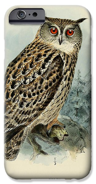 Drawing Of Eagle iPhone Cases - Eagle Owl iPhone Case by J G Keulemans