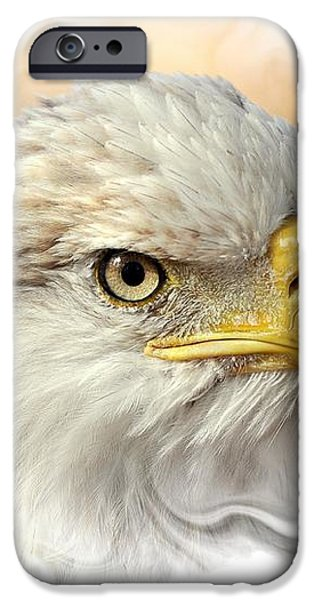 Eagle6 iPhone Case by Marty Koch