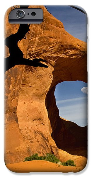 Ear Of The Wind iPhone Case by Susan Candelario