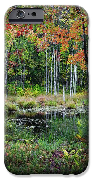 Fall In New England iPhone Cases - Early Color iPhone Case by Bill  Wakeley