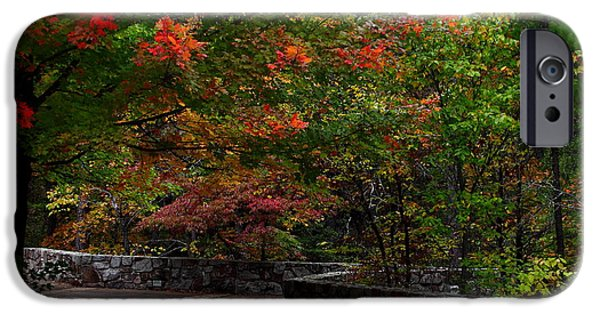 Arkansas iPhone Cases - Early Fall At Talimena Park iPhone Case by Robert Frederick