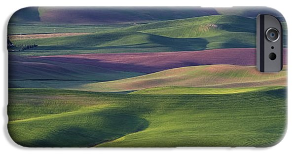 Crops iPhone Cases - Early Light in the Palouse iPhone Case by Latah Trail Foundation