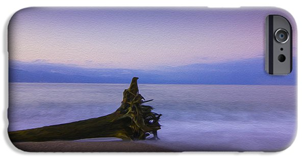Driftwood iPhone Cases - Early Morning iPhone Case by Aged Pixel