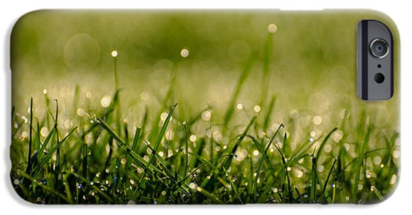 Ground Level iPhone Cases - Early Morning Dew iPhone Case by Mountain Dreams