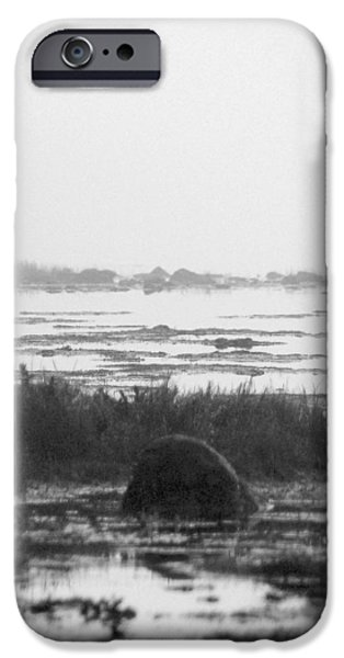Early Morning Fog iPhone Case by Mike McGlothlen