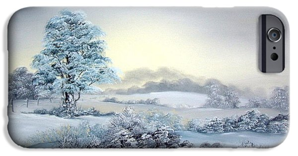 Berry iPhone Cases - Early Morning Snows iPhone Case by Jean Walker