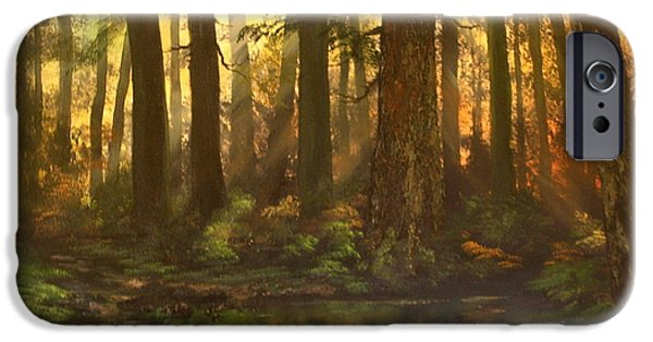 Headstones Paintings iPhone Cases - Early Morning Sun on Cannock Chase iPhone Case by Jean Walker