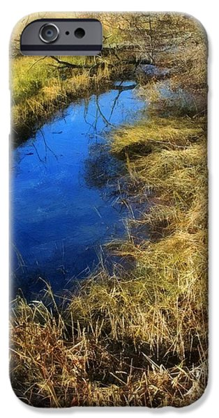 Salt Marsh. New England iPhone Cases - Early on a Frosty Morning iPhone Case by RC DeWinter