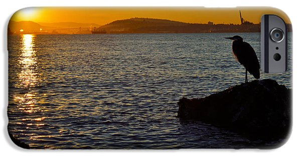 Burrard Inlet iPhone Cases - Early Riser iPhone Case by Terry Elniski