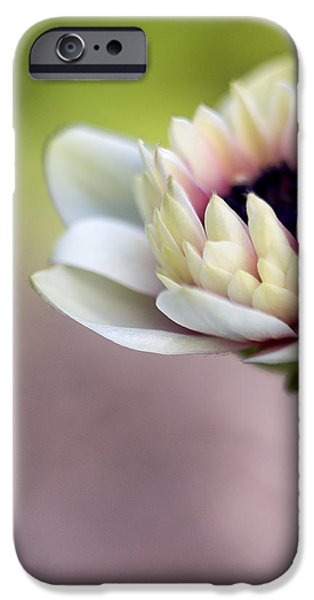 Early Spring  iPhone Case by Caitlyn  Grasso