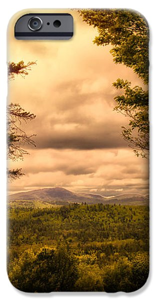 Early Spring Rain iPhone Case by Bob Orsillo