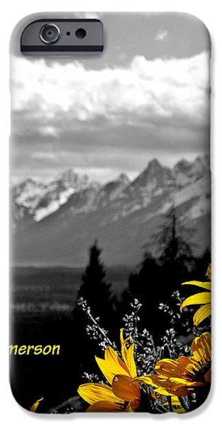 Earth laughs in flowers iPhone Case by Dan Sproul
