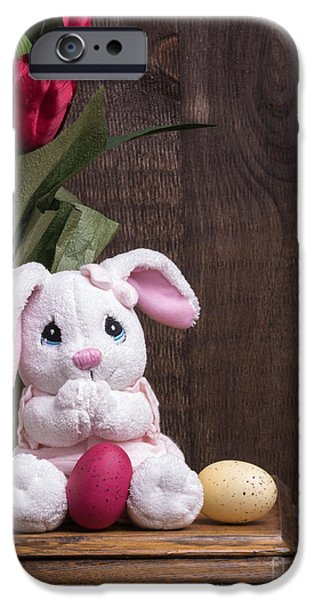 Stuffed Animal iPhone Cases - Easter Bunny iPhone Case by Edward Fielding