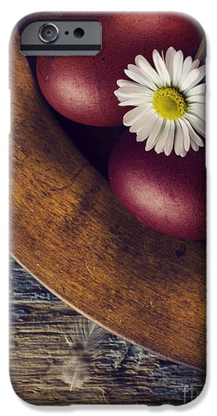 Ornament Pyrography iPhone Cases - Easter Eggs iPhone Case by Jelena Jovanovic