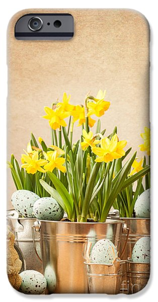 Concept Photographs iPhone Cases - Easter Setting iPhone Case by Amanda And Christopher Elwell