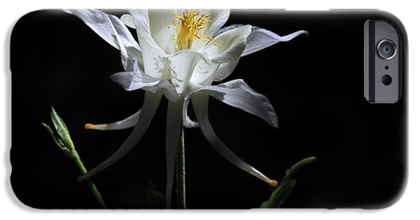 Columbine iPhone Cases - Ebony and Ivory iPhone Case by Donna Kennedy