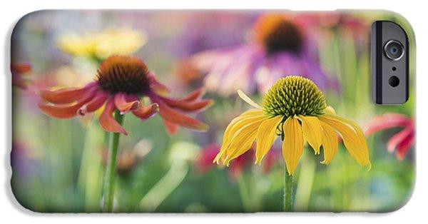 Echinacea iPhone Cases - Echinacea Cheyenne Spirit iPhone Case by Tim Gainey