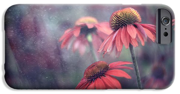Floral Photographs iPhone Cases - Echinacea Dream iPhone Case by Magda  Bognar