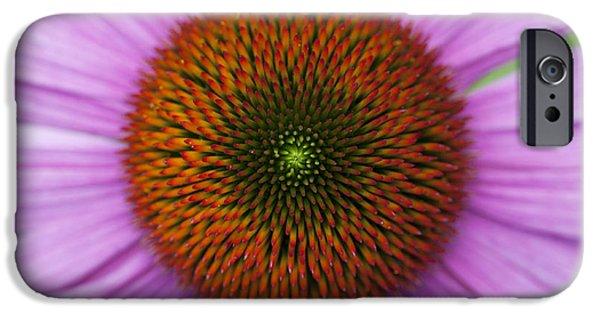 Echinacea iPhone Cases - Echinacea Purpurea Rubinglow flowers iPhone Case by Tim Gainey