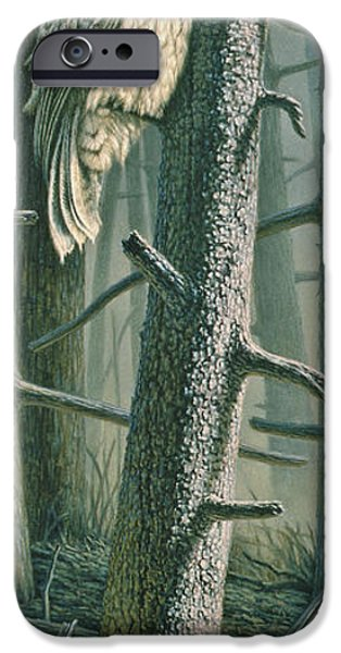 Forest iPhone Cases - Edge of the Burn iPhone Case by Paul Krapf