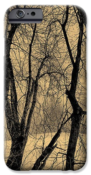 Edge of Winter iPhone Case by Bob Orsillo