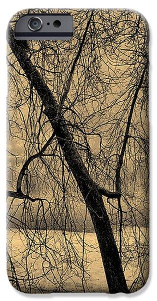 Edge of Winter iPhone Case by Bob Orsillo