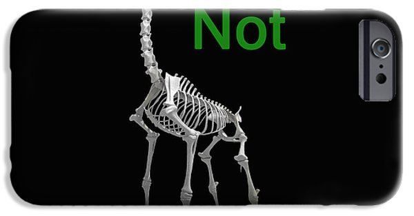Fund For Animals iPhone Cases - Educate Not Execute iPhone Case by Eric Kempson
