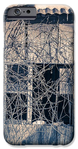 Hiding Photographs iPhone Cases - Eerie Old Shack iPhone Case by Edward Fielding