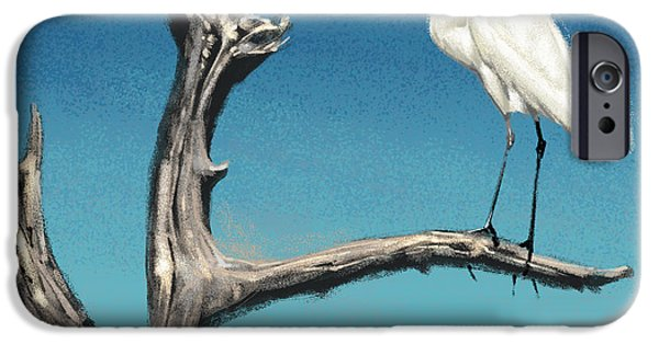 Florida Wildlife iPhone Cases - Egret iPhone Case by Aaron Blaise