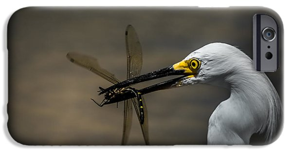 Cabin Window iPhone Cases - Egret And Dragonfly iPhone Case by Robert Frederick
