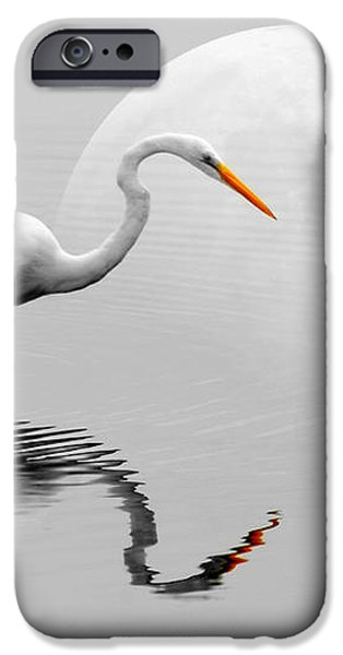 Egret With Moon  iPhone Case by Diana Angstadt