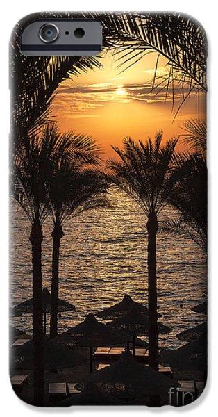 Daybreak iPhone Cases - Egypt sunrise iPhone Case by Jane Rix