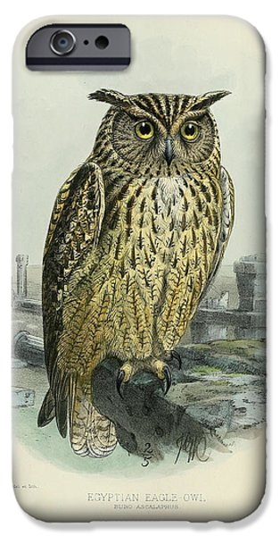 Drawing Of Eagle iPhone Cases - Egyption Eagle Owl iPhone Case by J G Keulemans