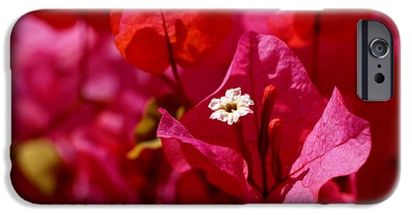 Red iPhone Cases - Electric Pink Bougainvillea iPhone Case by Rona Black
