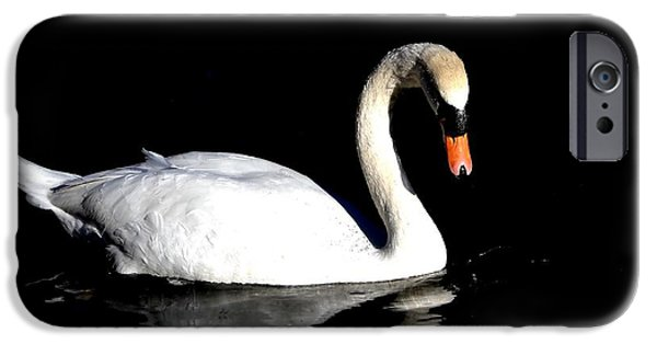 Swans... iPhone Cases - Elegance iPhone Case by Deena Stoddard