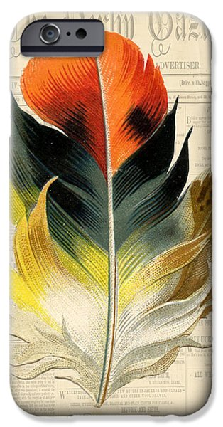 Nature Study Digital Art iPhone Cases - Elegant Feather-C iPhone Case by Jean Plout