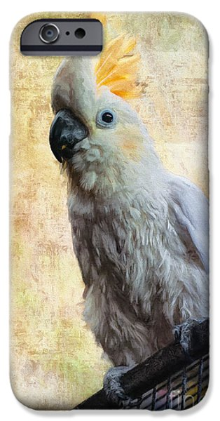 Cockatoo iPhone Cases - Elegant Lady iPhone Case by Lois Bryan