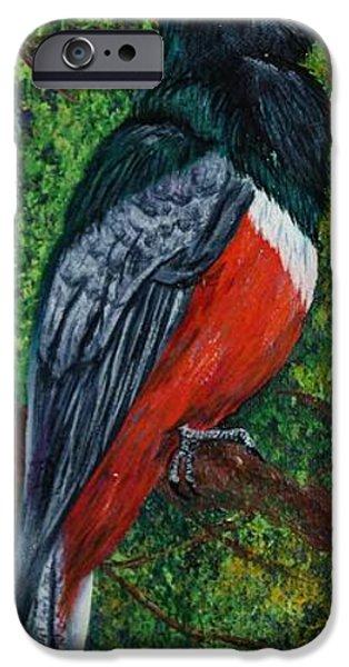 Birds On Limbs iPhone Cases - Elegant Trojan iPhone Case by Linda Eversole