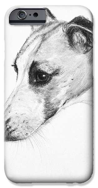 Rescued Greyhound iPhone Cases - Elegant Whippet iPhone Case by Kate Sumners